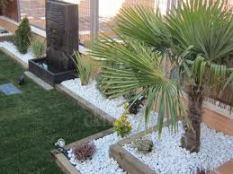 jardineria y paisajismo en elche y alicante valsan