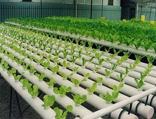 proyectos-ingenieria-agricola